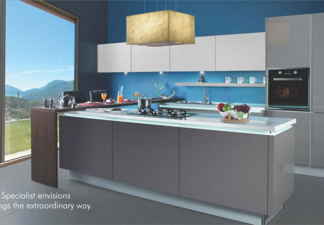 Sleek Modular Kitchen 1